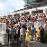 Five Questions to be Answered in the Arlington Million