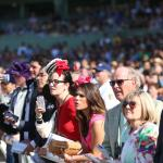 Los Ponies Longshots: Picture Perfect at Santa Anita