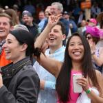 Making Money Betting the Favorite in the Preakness Stakes