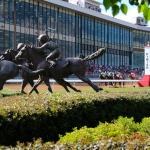Two Horses Capable of Upsetting Improbable in First Division of Rebel