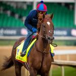 Narrowing Down a Competitive 2017 Kentucky Derby Field
