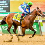 Breeders' Cup Juvenile Favorite Jackie's Warrior Living Up to His Name
