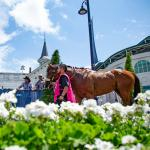 Dan's Double: Challenging Saturday Card at Churchill Downs