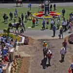 Betting an Improving Sprinter in Saturday's Bing Crosby Stakes