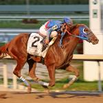 Derby Fever in Venezuela After Gunnevera Wins Fountain of Youth