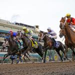2018 Florida Derby Cheat Sheet