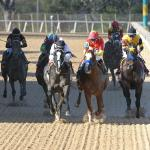 Long Range Toddy Upsets Improbable in First Division of Rebel Stakes