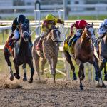2018 Louisiana Derby Cheat Sheet