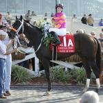 Inside the Numbers: 2019 Louisiana Derby