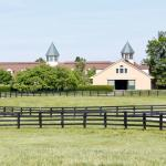 Visit Horse Country: Lane's End Is a Must-Visit Destination
