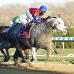 Among Horse Racing Holidays, Thanksgiving is Tops