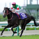 Lys Gracieux Earns Breeders' Cup Berth with Win in Japan
