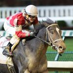 Promising McCraken Shining in Shadow of Twin Spires