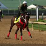 Three Live Longshots to Consider for the Kentucky Derby