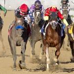 Does Illinois Derby Winner Multiplier Figure in Preakness Equation?