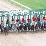 2018 Rebel Stakes Cheat Sheet