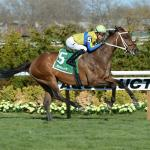 Three Horses With an Upset Chance in Fort Lauderdale Stakes