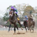 America's Best Horses Presented by America's Best Khakis