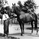 Man o' War: The Measuring Stick for Greatness