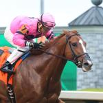 Longshots Enticing in Wide-Open Belmont Stakes