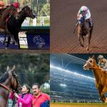 Fan Voting Opens for 2016 NTRA Moment of the Year