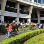NBCSN to Broadcast Louisiana Derby, New Kentucky Derby Series This Saturday
