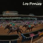 Los Ponies Longshots: A Winning Combination