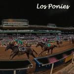 Los Ponies Longshots: Saturday Dive, Sunday Market
