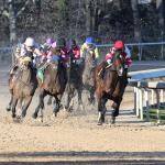 Haskin's Derby Dozen for March 20
