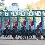 Byron King's Derby Dozen for Feb. 24