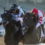 Road to 2019 Breeders' Cup: Three Heating Up, Three Cooling Down for Oct. 9