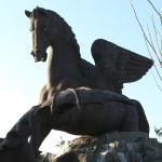 Hangin' with Haskin: Pegasus First Shot Fired