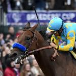 Analyzing Recent Trends in Breeders' Cup Classic Winners