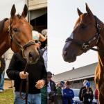 Justify vs. American Pharoah: What Preakness Times Mean for the Belmont