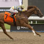 Pink Lloyd's Winning Streak in Jeopardy in Kennedy Road Stakes