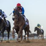 Plus Que Parfait Finds Path to Kentucky Derby in UAE Derby Win