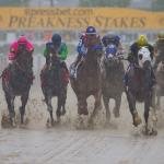 Which Runners Would Benefit From a Wet Track in Preakness?
