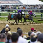 Two Horses With a Chance to Upset the 2019 Preakness Stakes