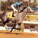 Princess Rooney: The First Breeders' Cup Distaff Winner