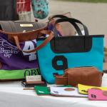 Purses for Ponies Gives Back to Retired Racehorses