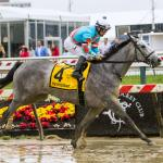 A Red Ruby Runaway in Black-Eyed Susan Stakes