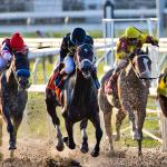 2019 Risen Star Stakes Cheat Sheet