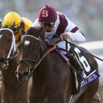Remembering Royal Delta, a Tenacious Champion