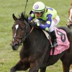 Rushing Fall an Exception to the Breeders' Cup Rule
