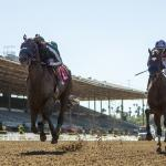 Best Bets: Key Class Drop, Stakes Selections
