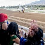 No Home Field Advantage in Breeders' Cup 2019