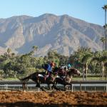 Ten Things to Know Before You Go: Santa Anita Derby