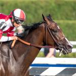 Songbird Wins Toughest Test Yet in Emphatic Style