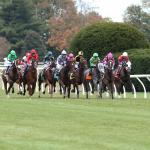 Kentucky Horse Racing Commission Committee Approves Keeneland Summer Meet