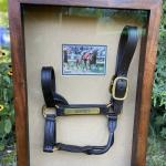Triple Crown Halter Auction to Benefit Ronald McDonald House Charities